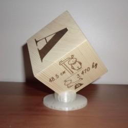 Cube de naissance